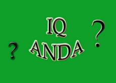 Segmen IQ ANDA