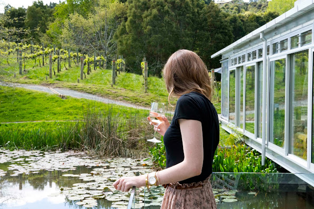 new_zealand_brick_bay_vineyard_matakana