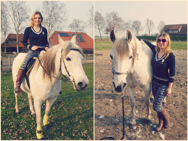 Horse Riding in Germany