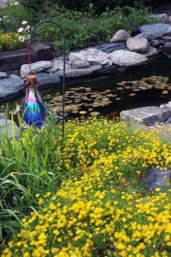 Pond liner blog top ten tips for building your dream for Pond building tips