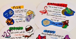 Biologi Untuk SMA/MA Kelas X Semester 2: Kingdom Animalia