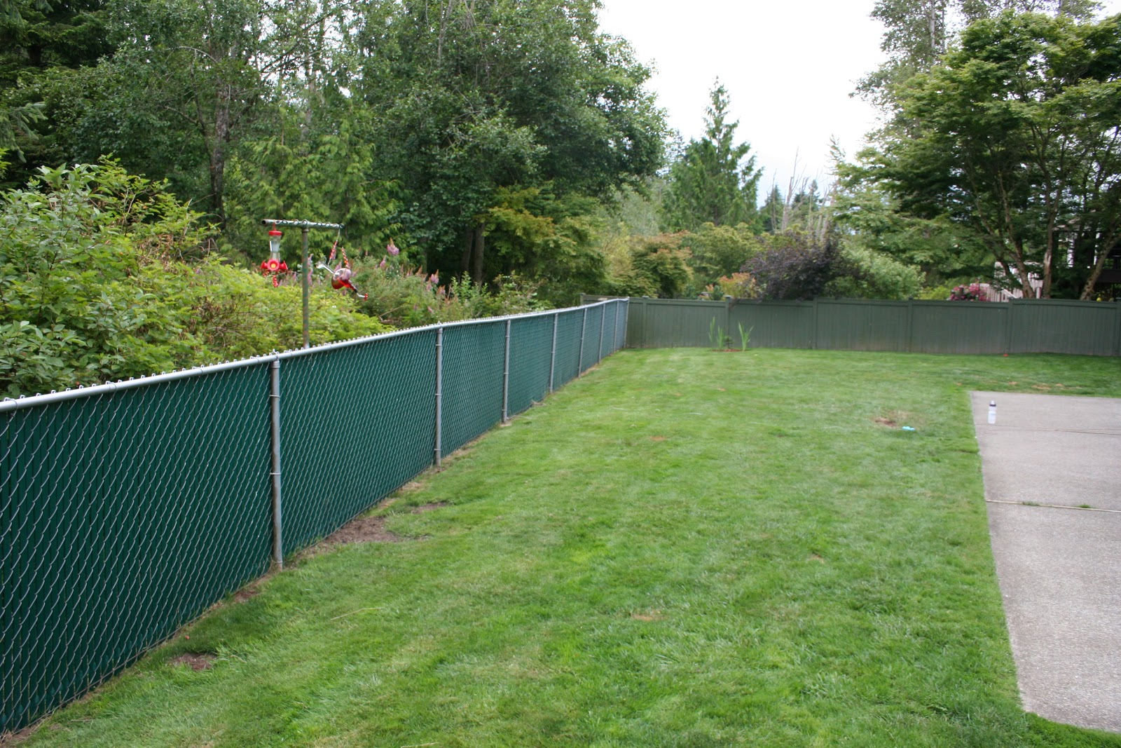A Home...at last!: Greenbelt...green fence