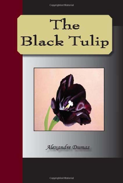 the black tulip by alexandre dumas essay By the light of the dark lantern he saw the tulip open, and black as the night in which he was hidden he heard the plan concerted between cornelius and rosa to send a messenger to haarlem he saw the lips of the lovers meet, and then heard cornelius send rosa away.