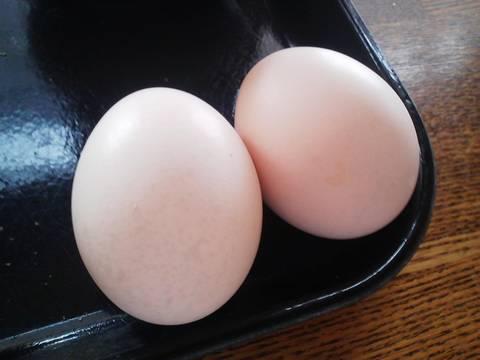ゆで卵 アランチーボ2回目