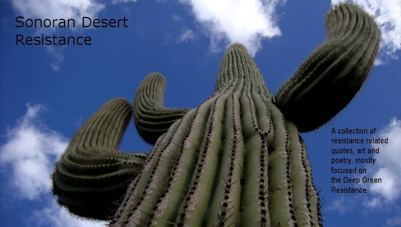 Sonoran Resistance