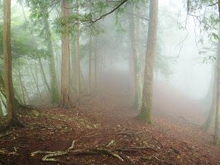 朝靄の尾根道
