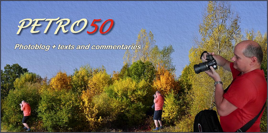 PETRO50
