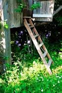 Trädgårdsbloggar med zon-angivelse
