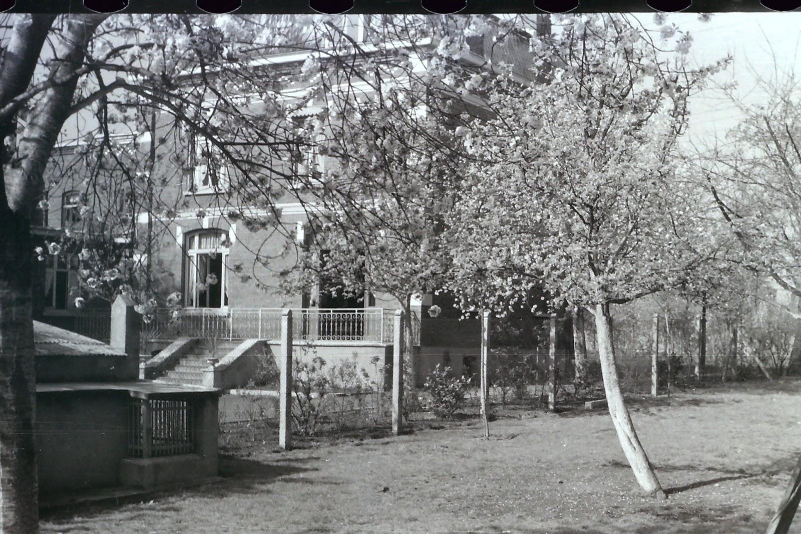 jardin de la sauvagine souvenir d 39 enfance la maison o je suis n des photos des ann es 40. Black Bedroom Furniture Sets. Home Design Ideas