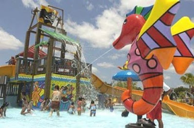 Grapeland Water Park Summer Camp Miami