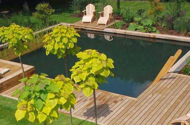 Garden with Natural Swimming Pools Ideas | Italian Home Decoration