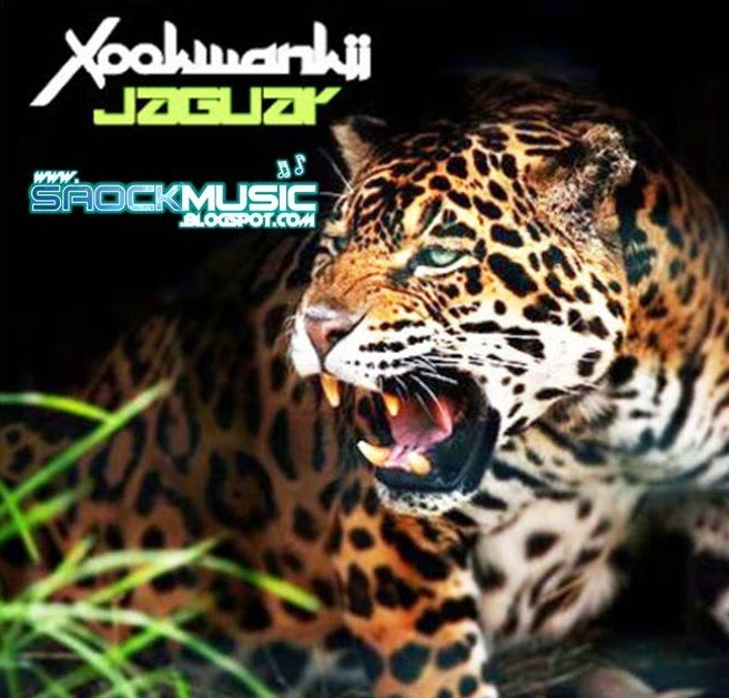My life is music jaguar xookwankii 11 years special for Jaguar house music