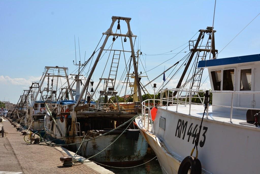Fisher's port Rimini