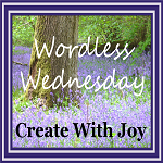 http://www.create-with-joy.com/2014/05/wordless-wednesday-seeing-double.html