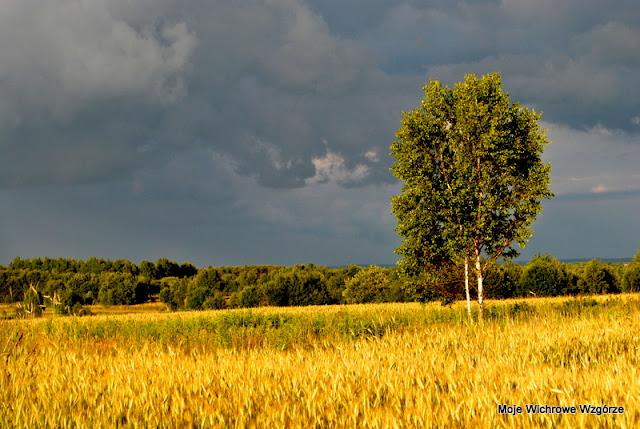 Burza, niebo, niebieski, niebo przed burzą, niebo na wsi, slow life, wieś,