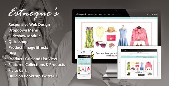 fashion store website theme