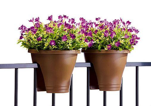 Il piacere di piante e fiori per il balcone for Vasi per balcone