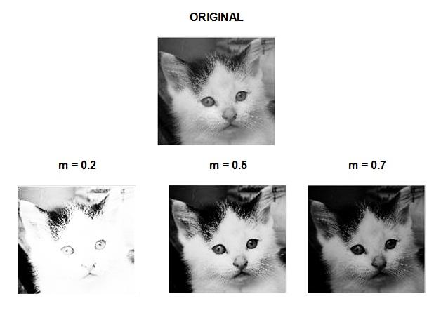 matlab open pdf as image