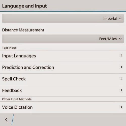 Language and Input Setting