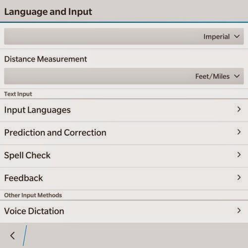 Language and Input Setting