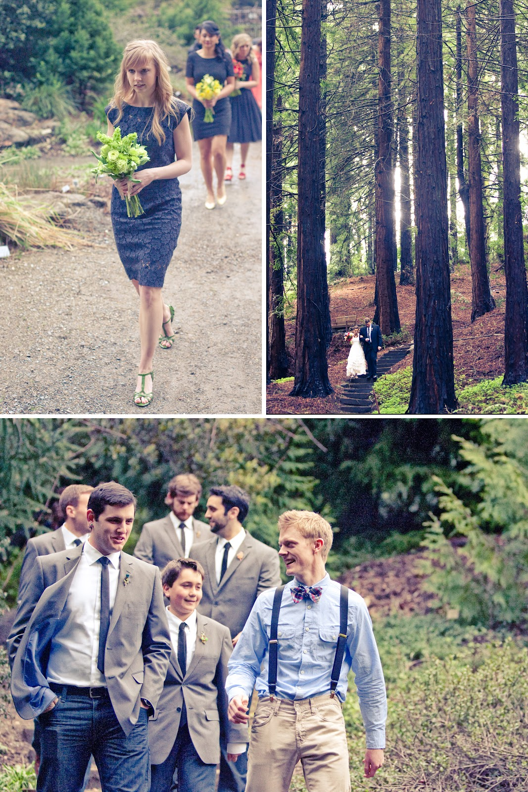 Berkeley, Bontanical Gardens, Mather Redwood Grove, OneLove Photography