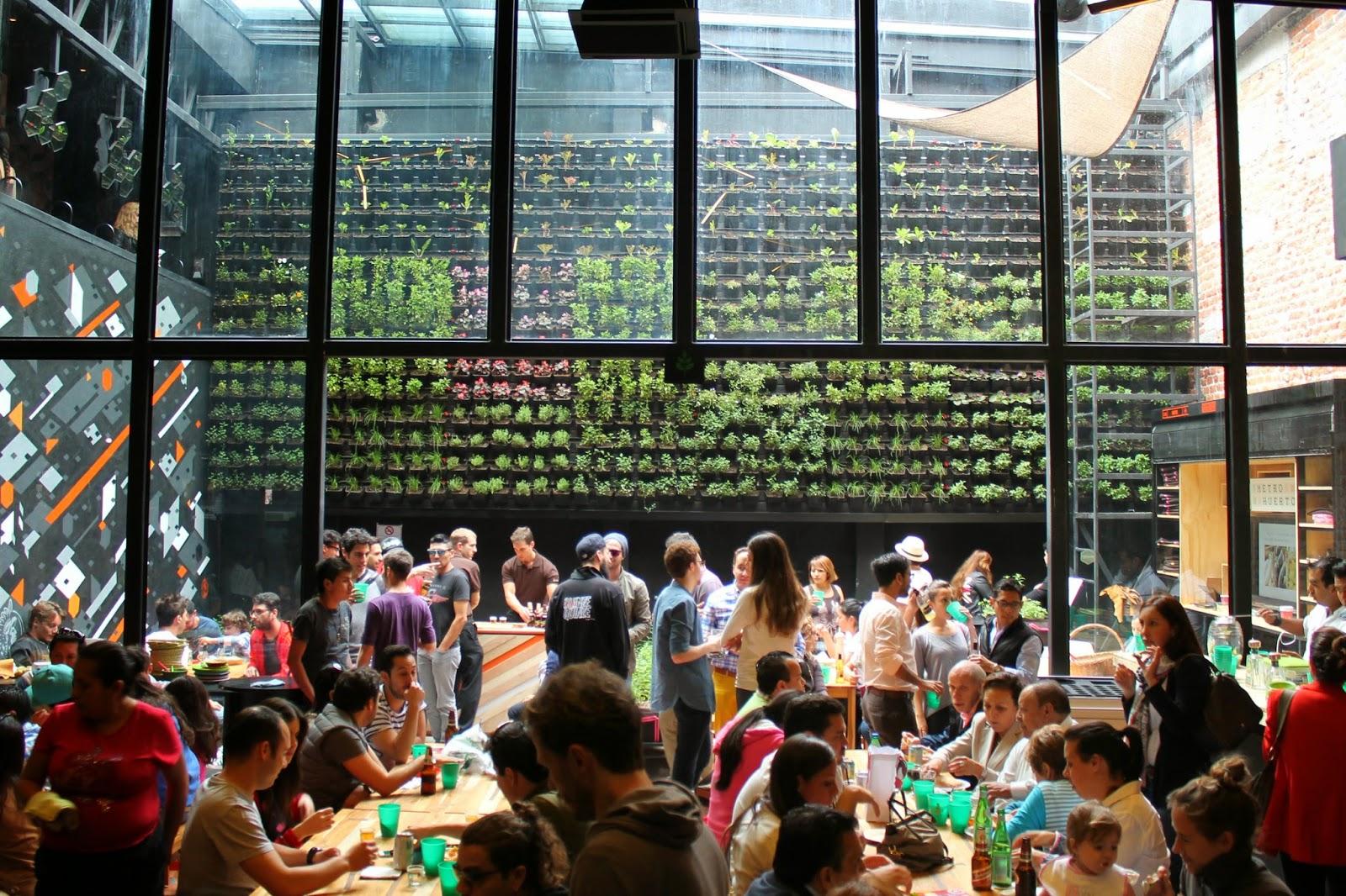 Mercado Roma DF Garden