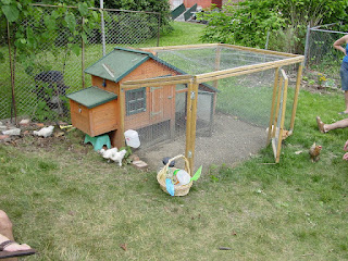 A small chicken coop with fenced in area in Pittsburgh