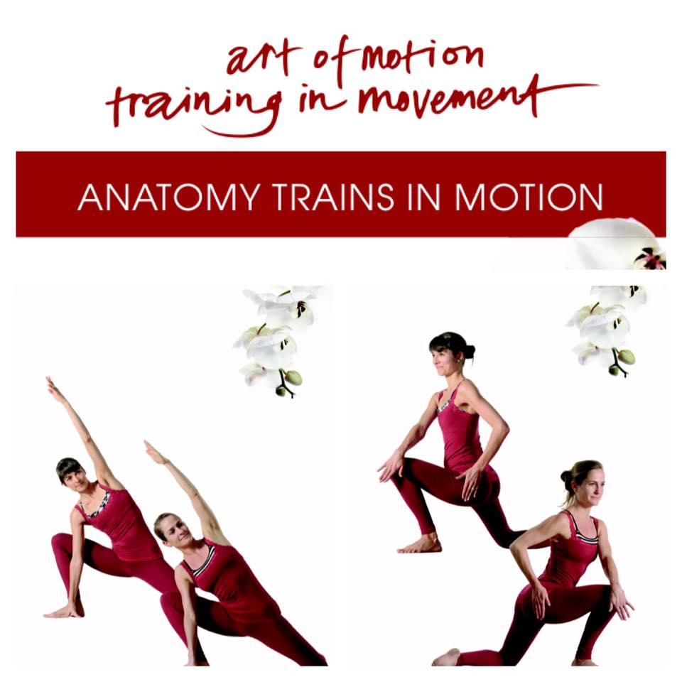Art Of Motion Dezember Newsflash Anatomy Trains In Motion