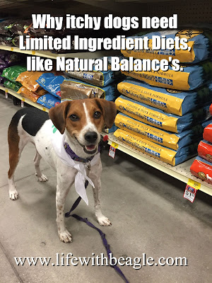 Natural Balance Limited Ingredient Diets available at PetSmart