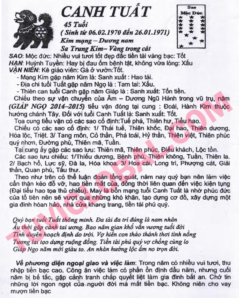 Tử vi tuổi Canh Tuất nam mạng - Thái Ất tử vi 2014 Giáp