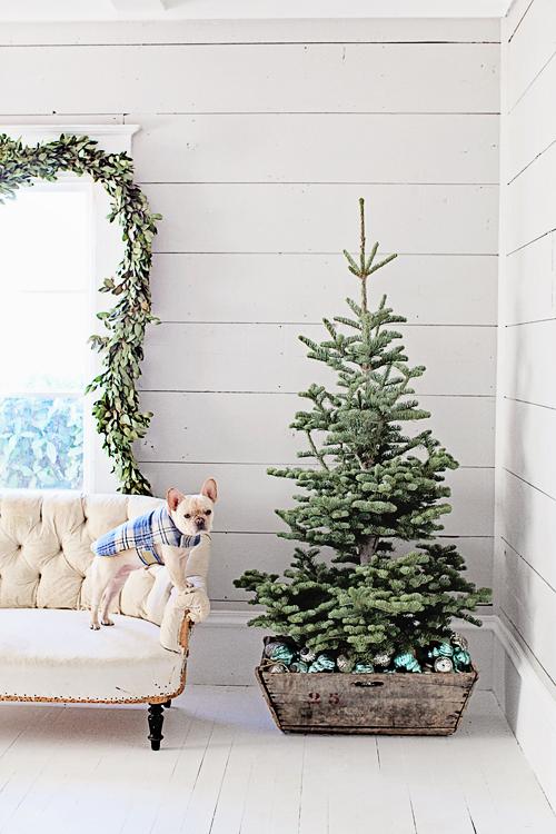 Foto Weihnachtsbaum_dreamy_whites