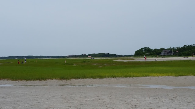 Cape Cod 2015 Trip Continued:  Skaket Beach, Baker's Pond, Outside Wellfleet Preservation Hall, and New England Aquarium --How Did I Get Here? My Amazing Genealogy Journey