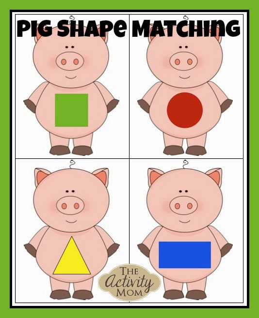 pig shape matching