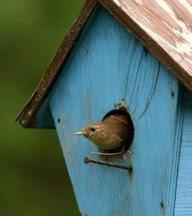 """""""Venha quando quiser:- Tem espaço na casa e no coração """" (Caio F. Abreu)"""