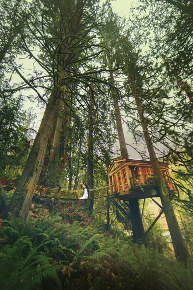 get married at a treehouse, woods wedding, destination mountain wedding, wedding in a rain forest, fantasy wedding locations