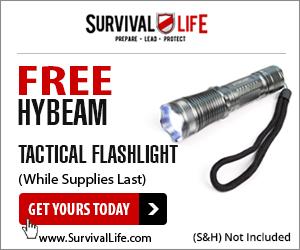 Hybeam