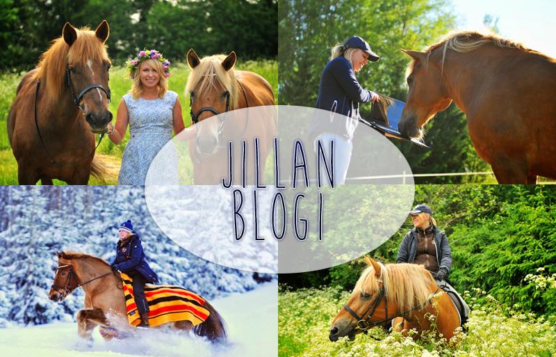 http://jillanblogi.blogspot.fi/