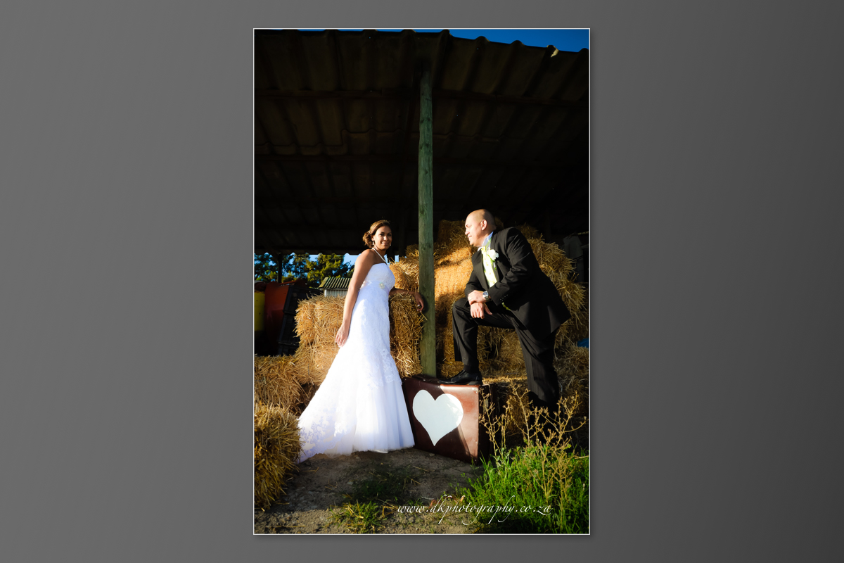 DK Photography DVD+slideshow-349 Cleo & Heinrich's Wedding in D'Aria, Durbanville  Cape Town Wedding photographer