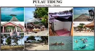 http://pulautidungpakettour.blogspot.com/