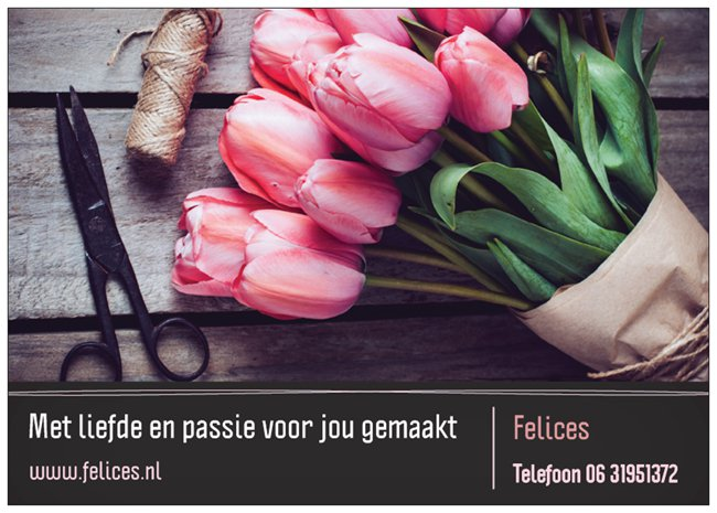 De webshop van Felices