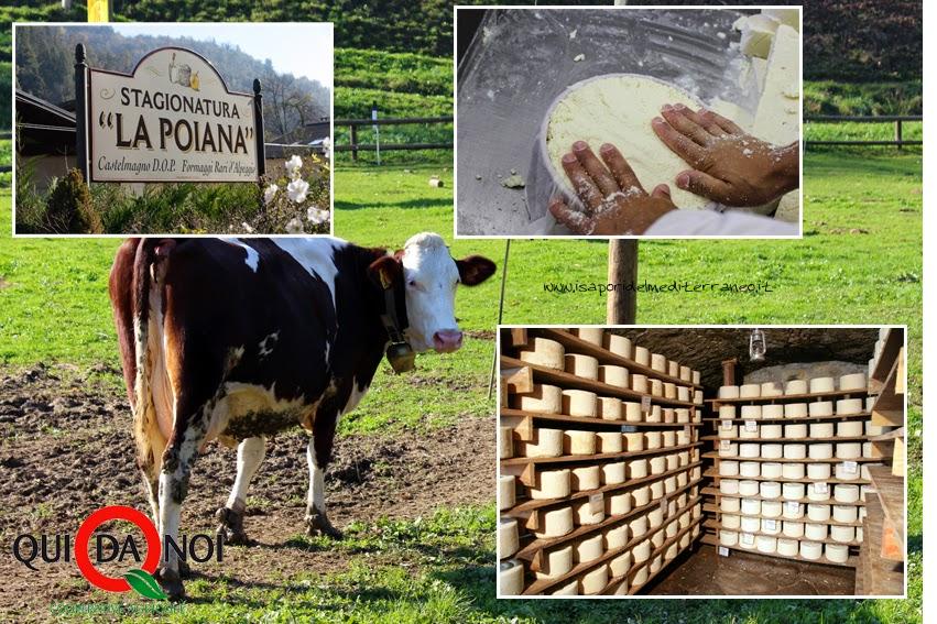 Eccellenze Piemontesi