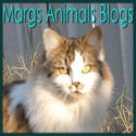 This is Marg's Pet Blog