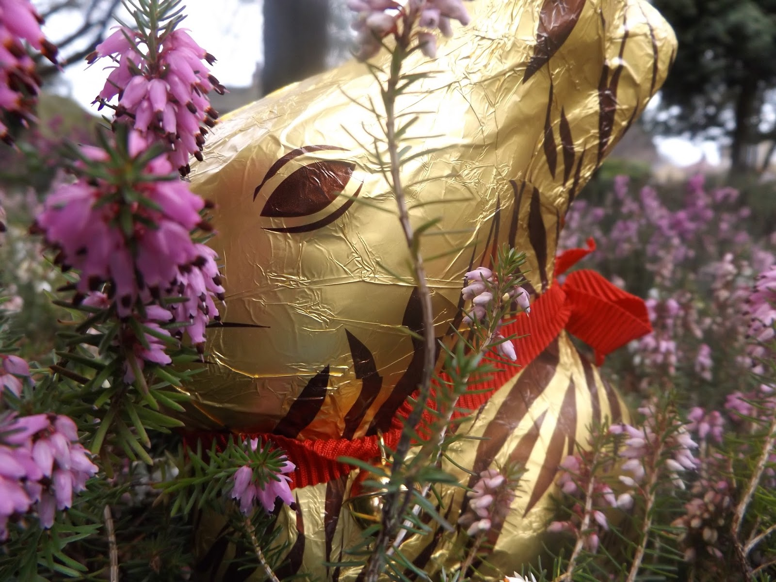 lindt chocolate bunny, big fashionista