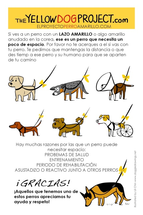 The-Yellow-Dog-Project