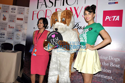 Jacqueline at the PETA promotion at Lakme Fashion Week-2013
