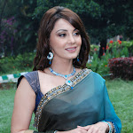Minisha Lamba In Saree Latest Images
