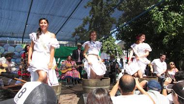 Molienda en Fiesta de la Vendimia Chillán 2015