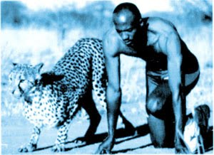 manusia cheetah man