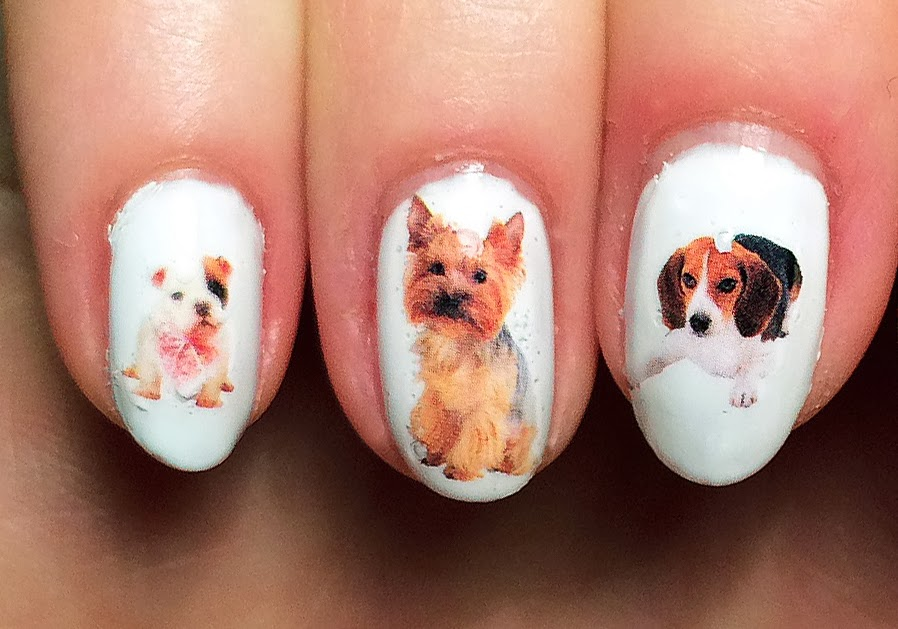 21 Extraordinary Puppy Nail Art Ledufa Plain With Its Floppy Ears And Brown Eyes