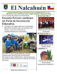 El Nalcahuén IMPRESO N° 35 (Diciembre de 2016)